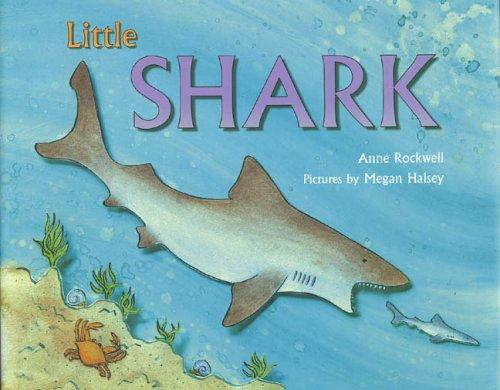 Download Little Shark