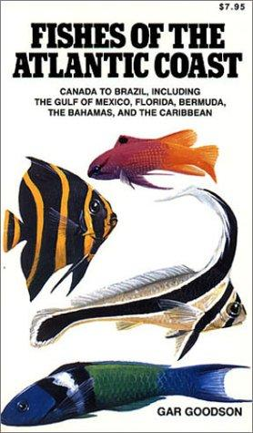 Download Fishes of the Atlantic Coast