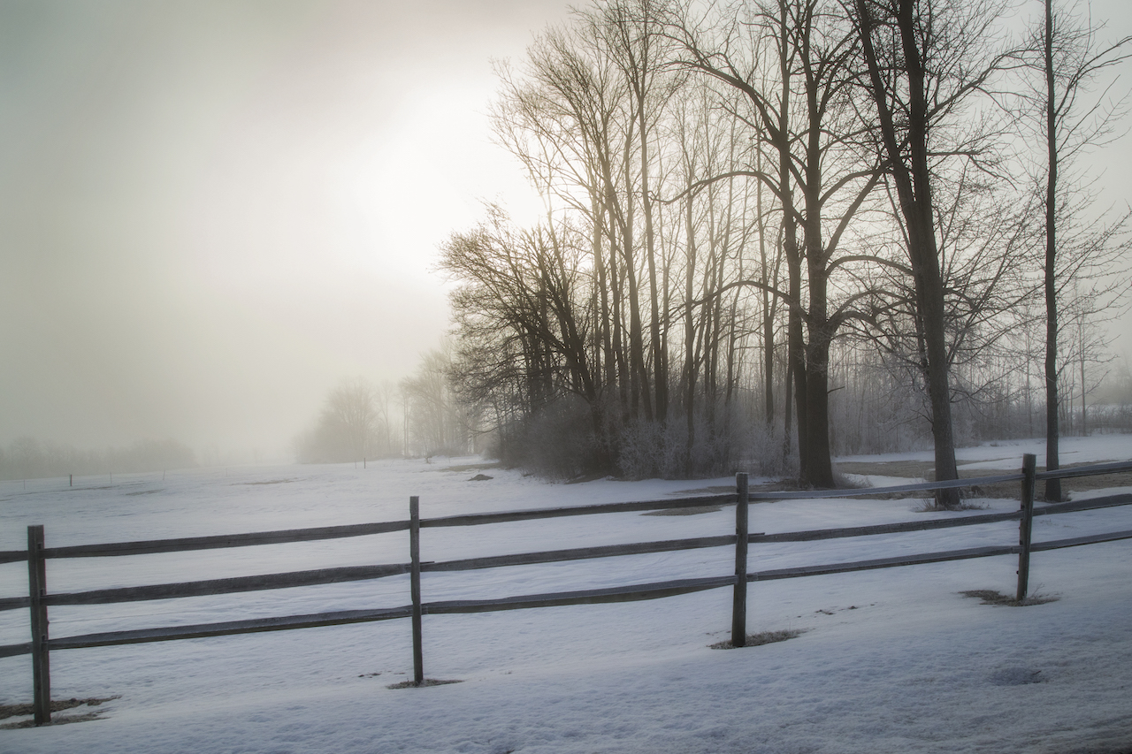 Fog, sun, frost, and spring in the Finger Lakes (photo)